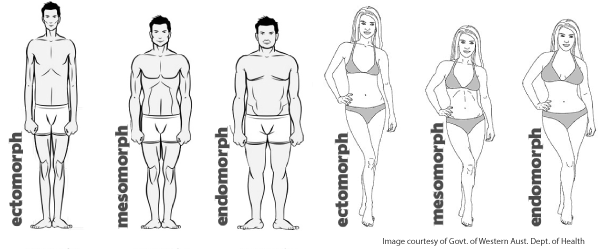 ectomorph-body-type